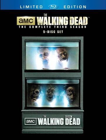 File:The-Walking-Dead-Wiki S3 5-Disc-Blu-ray-Limited-Edition Zombie-Head-Tank.jpg