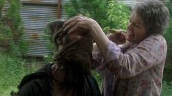 Normal twd0602-1544
