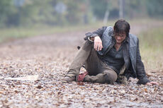 TWD-Episode-413-Main-590.jpg