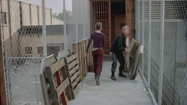 File:The-Walking-Dead-Carol-Peletier-image-the-walking-dead-carol-peletier-36083445-1280-717.jpg