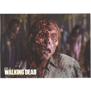The Walking Dead - Sticker (Season 2) - S23