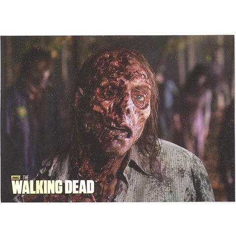 File:The Walking Dead - Sticker (Season 2) - S23.jpg