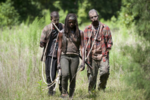 AMC TWD After