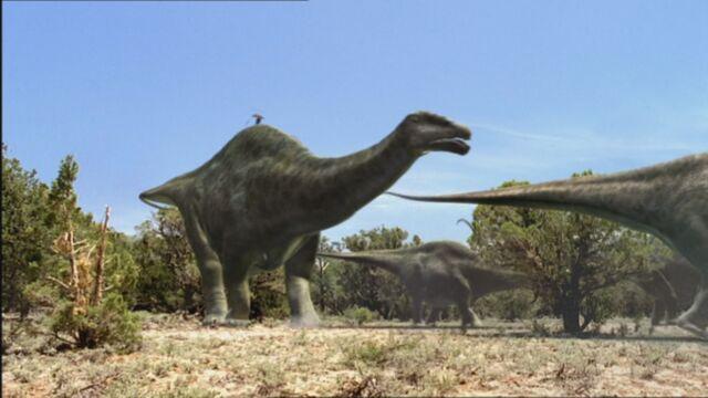 File:BA ApatosaurusHerd.jpg