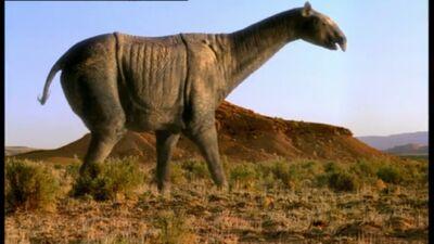 Výsledek obrázku pro indricotherium
