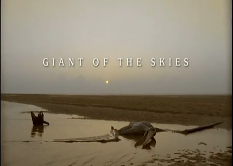 File:Giant of the skies.png