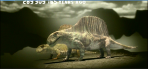 Synapsid evolotion