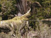 DryosaurusInfobox