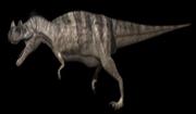 Ceratosaurus App