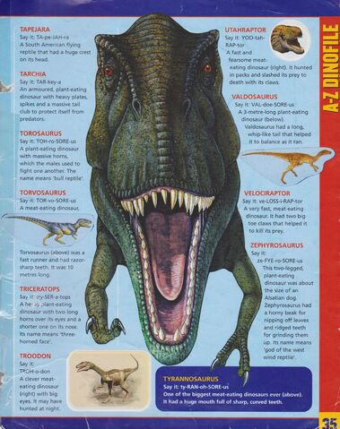 File:WWD Sticker Album Page 35.jpg
