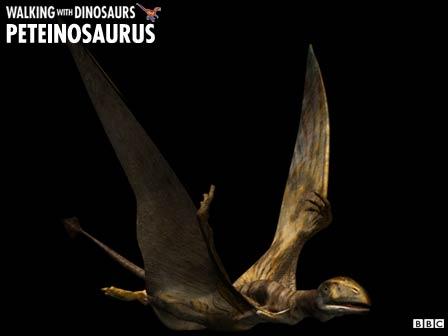 File:Peteinosaurus z1.jpg