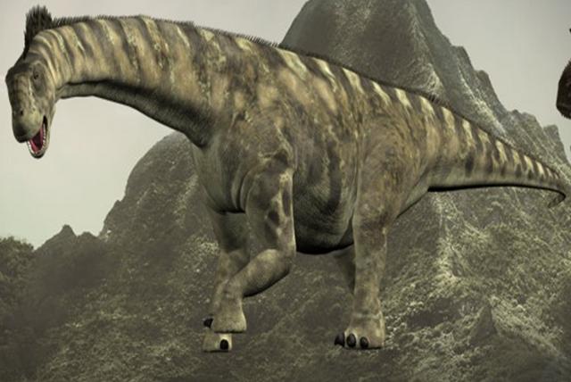 File:Camerasaurus.png