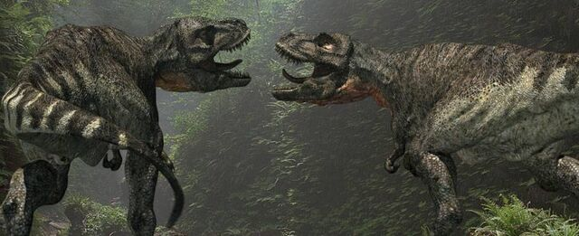 File:Trex face to face.jpg