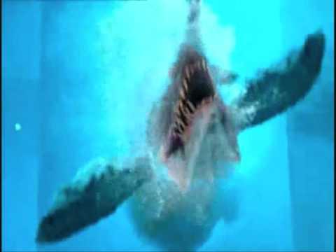 File:1 3 mosasaur in pool.jpg
