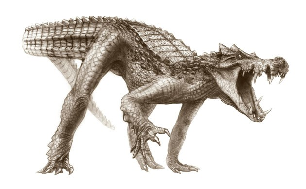 File:Kaprosuchus saharicus.jpg