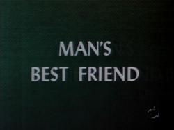 Man's Best Friend (TV Title)
