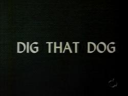 Dig That Dog (TV Title)
