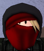 File:Ninja Assassin.png