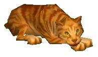 File:Catwiki.jpg
