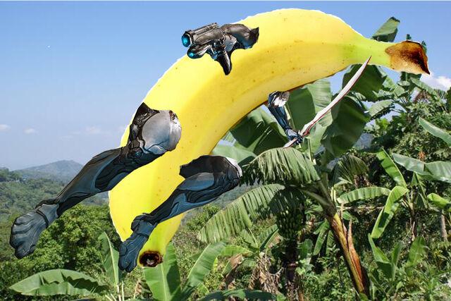 File:BananaFrame zps5f35e0f1.jpg