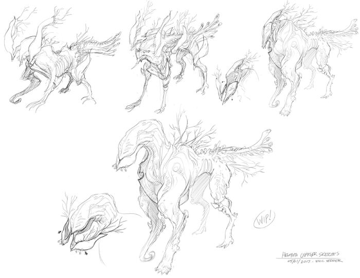 VED Helminth Sketches.jpg