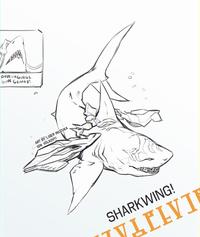 Sharkwing
