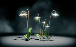 File:Moonlight Dragonlily2.png