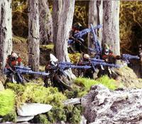 Saim-Hann Rangers forest