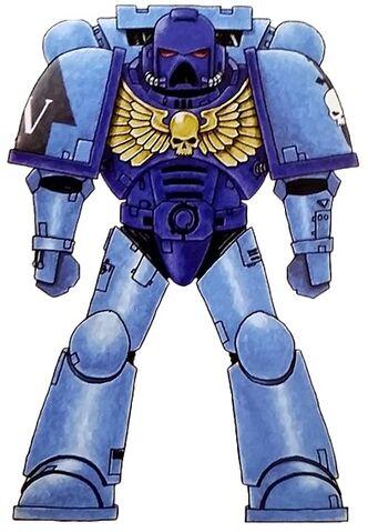 File:Sky Sentinels Astartes.jpg