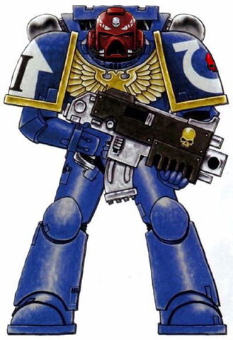 File:Ultramarines Vet Sgt 2.jpg