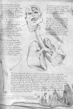 Warhammer Ogre Sketch