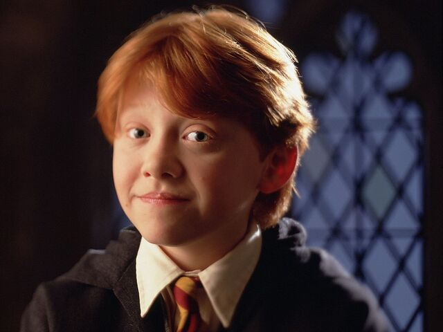 File:Harry-Potter-and-the-Philosopher-s-Stone-2001-books-male-characters-29853588-1024-768.jpg