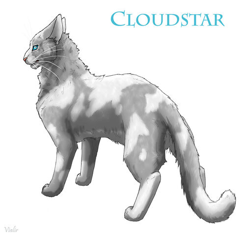 File:Cloudstar by vialir-d6h1ma6.jpg