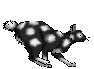 File:Stormclaw.star.png