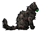 Yellowfang (Medicine Cat)
