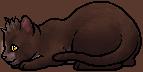 Little Mew.kit