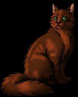 Foxleap.warrior