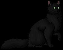 File:Dark Whiskers.sc.png