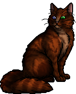 Foxnose.warrior