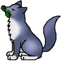 Hollydapple Medicine Cat.png