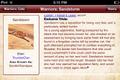 App.Sandstorm.png