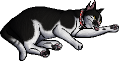 File:Jacques.kittypet.png