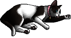 File:Minty (KP).kittypet.png