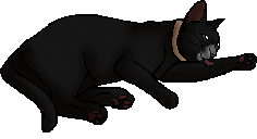 File:Moss (KP).kittypet.png