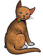 File:Warriorcat1195.personal.png