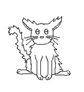 Cat-Blank-16