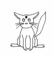 Cat-Blank-5