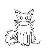 Cat-Blank-25