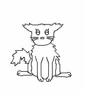 Cat-Blank-31
