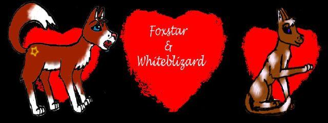 File:Foxstar and his lover Whiteblizard.jpg